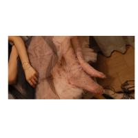 Прозорі носочки із зірочками мереживні носочки