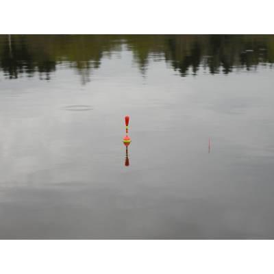 Поплавок для риболовлі світлодіодний світиться електронний поплавок 2 варіанти на вибір - 1 шт.