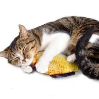 Мягкая игрушка рыба Карась 19см для кошек кота с кошачьей мятой