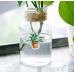 """Наклейки """"New plants"""", стикеры, 45 шт"""