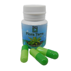 Ptero Flora Terra