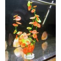 Искусственное растение Poly Gram A039