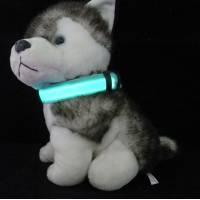 Светящийся ошейник для собак, кошек, щенков, котят- размер M