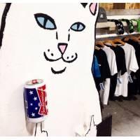 Шапка з котом який показує фак