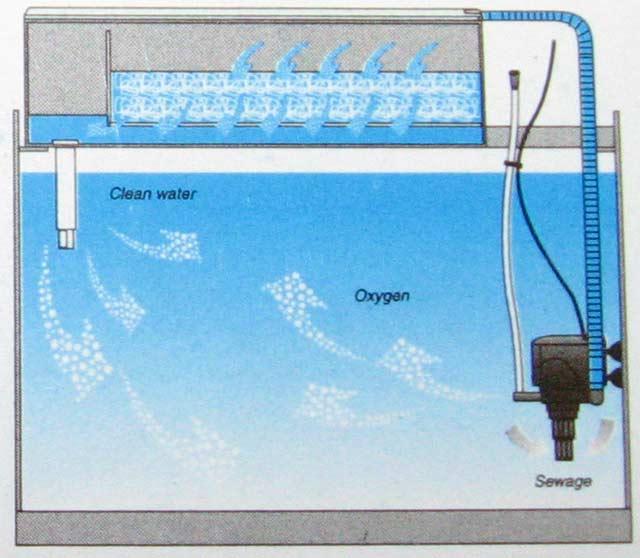 Схема работы ТОП фильтра RS-