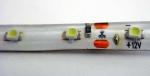 Светодиодная лента белого цвета 3520 + блок питания 12 вольт + коннектор (влагозащитная)