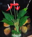 Искусственное пластиковое растение Антуриум 101
