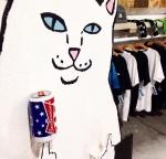 Шапка с котом показывающим фак
