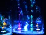 Танцующие колонки Water Dancing